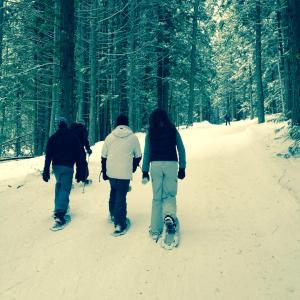 SnowshoeSquare