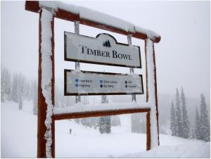 Timber Bowl